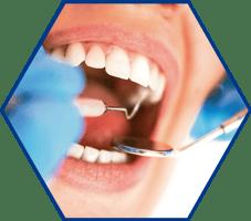 6H Dentist 2